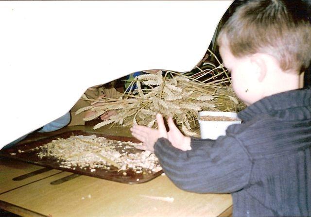 enlever les grains de blé
